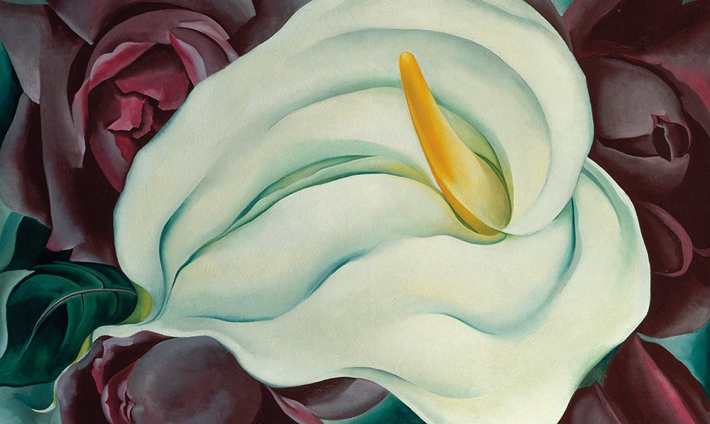 Georgia O'Keeffe: One Hundred Flowers: 30th Anniversary Edition with slipcase by Callaway Arts & Entertainment