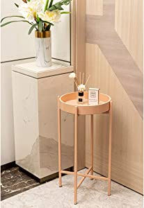 "HAWOO Metal Tall Plant Stand with Removable Tray, Small Round Side End Tables for Living Room, Indoor Home Decor, 23.5""(H) x 13.25''(D), Pink"