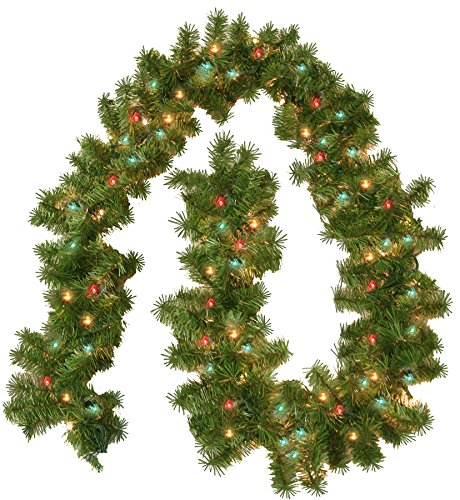 General Foam Plastics Pre Lit Portland Branch Garland, 100 Multi Lights (Outdoor Christmas Garlands)