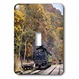 3dRose lsp_97085_1 West Virginia, Cass Scenic Railroad, Steam Train US49 WBI0030 Walter Bibikow Single Toggle Switch