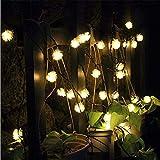 TechCode Fairy Garden Lighting, Waterproof Solar
