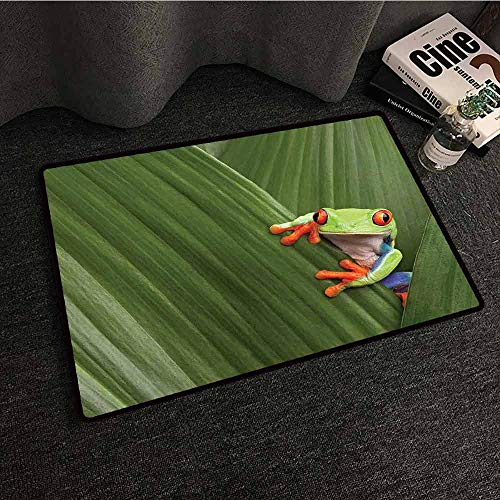 Kitchen Mat Animal,Red Eyed Tree Frog Hiding in Exotic Macro Leaf in Costa Rica Rainforest Tropical Nature,Green,W30 xL39 Rugs for Sale