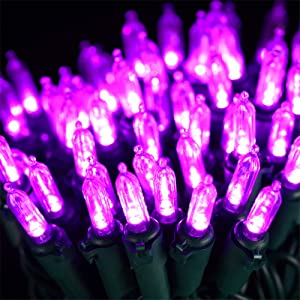 HAYATA ⭐️Halloween String Lights 24ft 100 LED Purple Mini Lights - Halloween Lighting Decor for Outdoor and Indoor Use, Garden, Yard, Party, Home, Holiday, Halloween Decorations