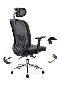 Cedric Ergonomic Mesh Office Chair, High Back Desk Chair with Adjustable PU Armrests and Mesh Headrest (CD-858FH)