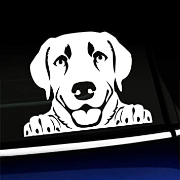 Red Doors Hoods StickAny Car and Auto Decal Series Labrador Retriever Style 6 Sticker for Windows