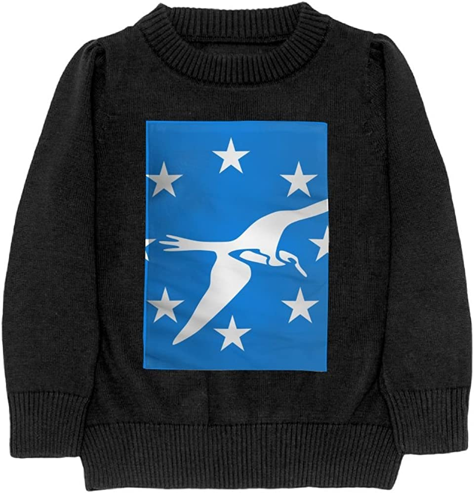 DTMN7 Flag of Corpus Teens Sweater Long Sleeves Crew-Neck Youth Athletic Casual Tee Junior Boys