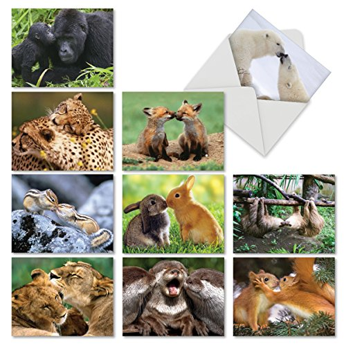 (10 Blank Greeting Cards 4 x 5.12 inch with Envelopes Featuring Adorable Animals Smooching - Animal Smackers Blank Note Cards for Any Occasion M6594OCBsl - NobleWorks)