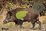 animal targets for shooting - SME Target Feral Hog Target