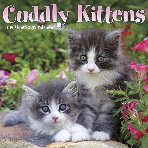 Cuddly Kittens  2018 Wall Calendar