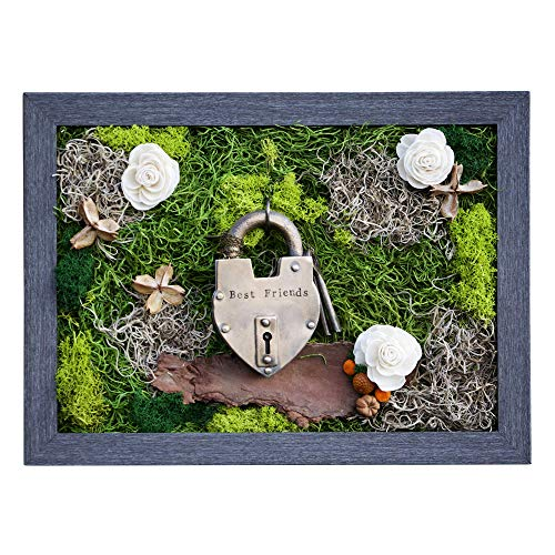 Garden Frame With Functional Antique Love Lock, Air Plants Flower Frame With Personalized Unity Ceremony LoveLock and Moss, Garden Wall Hanging Decor