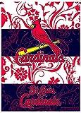 St Louis Cardinals Rico Premium 2-sided GARDEN Flag Outdoor House Banner Baseball