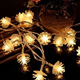ElementDigital Battery Pinecone String Lights Christmas Party LED Light String Pine Nuts Decoration Fairy Lights for Birthday Parties Thanksgiving Decorative Christmas Tree Lights (10 LEDs 6.5ft)