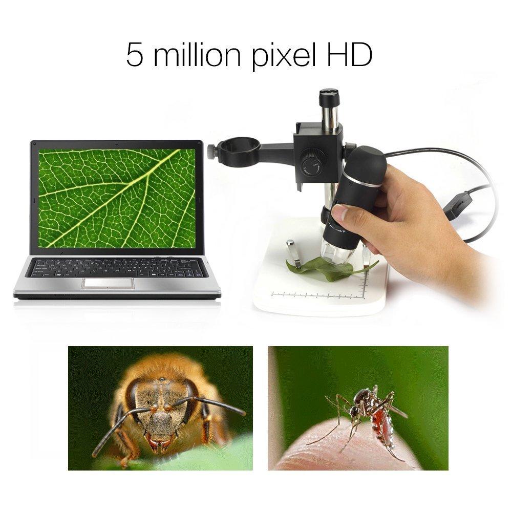 Usb Mikroskop Test GamutTek