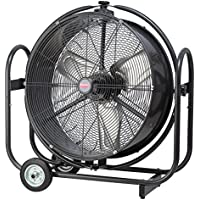 Dayton 10R361 Orbital Air Circulator, Mobile, 30 In