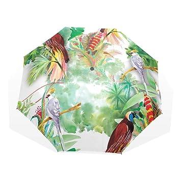 Exotiques Aquarelle Ezioly Voyage Sauvages Parapluie Fleurs Oiseaux N8Pw0XnOk