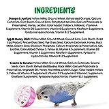 Vitakraft Parakeet Treat Sticks Variety 3 Pack