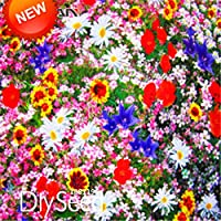 Promotion!200 Seed/pack Combination Seeds Perennial Flower Planting Mixed Wildflower Seeds Aromatic Fragrant,#ZY4HSU