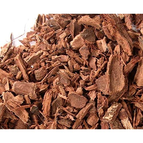 Cheap Bulk Herbs: Bayberry Root Bark (Wild Crafted) for cheap