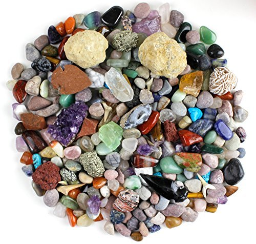Rock & Mineral Collection Activity Kit (Over 150 Pcs) , Educational Identification Sheet plus 2 Easy Break Geodes, Fossilized Shark Teeth and Arrowheads, Dancing Bear Brand (Open Geodes)