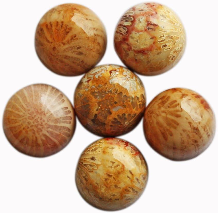 Cabujón de coral fosilizado natural, forma redonda, 24 mm, piedra preciosa para hacer joyas, calibrado, pulido suave FC 24 mm
