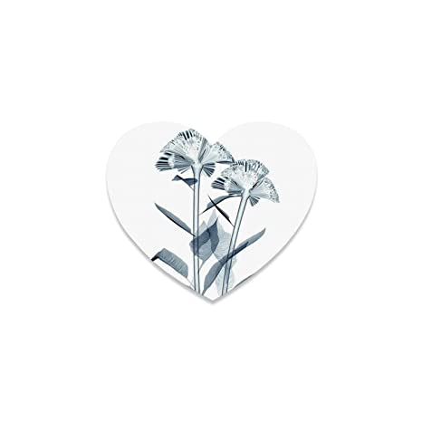 Amazon.com | Xray Flower Beautiful Heart Coaster, X ray ...