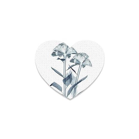 Amazon.com | Xray Flower Beautiful Heart Coaster, X ray ...