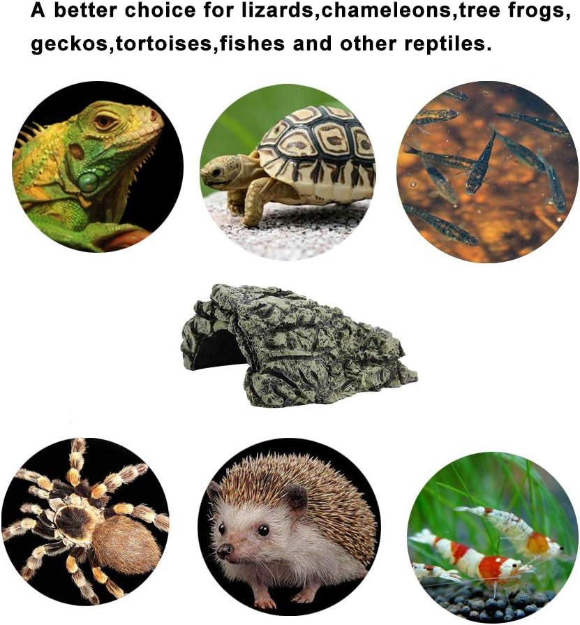 HEEPDD Cueva de Reptiles, Plataforma para el Sol de Resina Escondite Hábitat, Acuario Terrario Decoración Ornamento para pequeños lagartos Tortugas Anfibios Peces (Medio): Amazon.es: Productos para mascotas