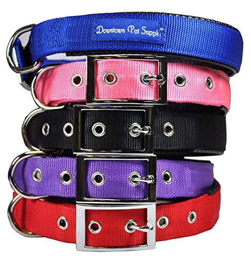 Purple Dog Dog Collar - Deluxe Adjustable Thick Comfort Padded Dog Collar, Medium, Purple, by Downtown Pet Supply