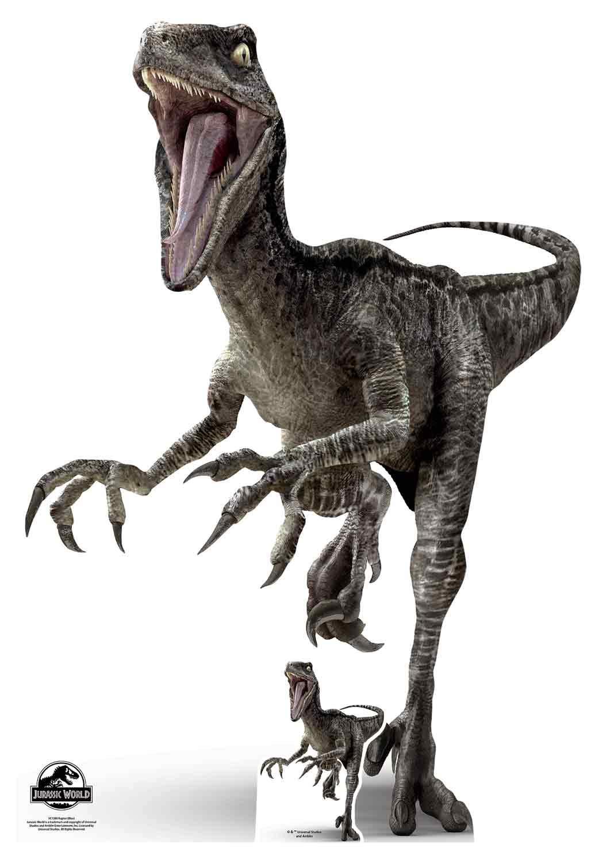 STAR CUTOUTS SC1280 Official Jurassic World Raptor Dinosaur (Blue) 135cm Tall, Multi Colour