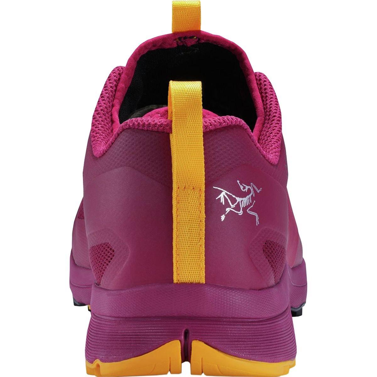 Arc'teryx Norvan VT GTX Trail Running Shoe - Women's B078N3F6L2 US 8.0/UK 6.5 Liberty/Arcturus