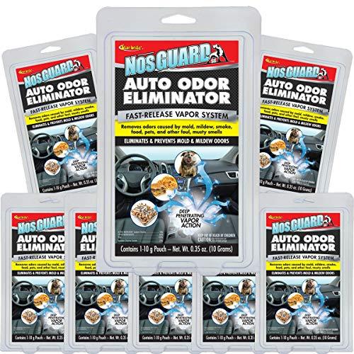 Star Brite 10 Pack NosGUARD SG Car Bomb Auto Odor Eliminator