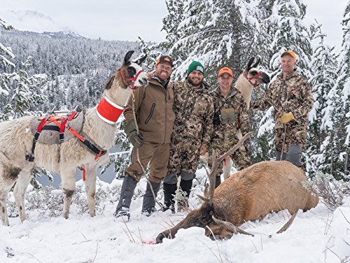 (Wyoming Elk Hunt )