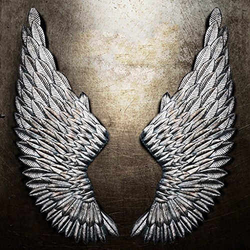 Angel Iron (QBDS LOFT Industrial Wind Angel Wings Vintage Wall Hanger, Bar Internet Cafe Creative Iron Wall Decoration Decorative pendant (Color : Silver))