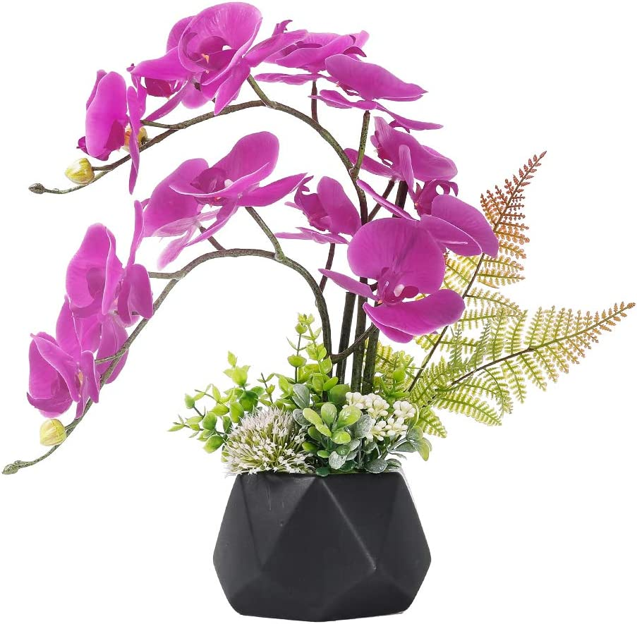 Amazon Com Lesing Artificial Ochid Flowers Fake Faux Orchid Arrangement With Vase Artificial Bonsai Potted Flowers Phalaenopsis Orchid In Vase For Home Decoration Style 1 Black Vase Kitchen Dining