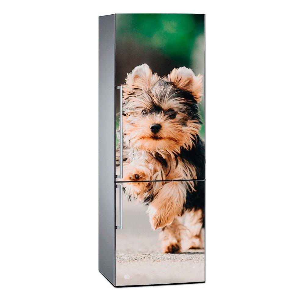 Pegatina Adhesiva Decorativa de Dise/ño Elegante Oedim Vinilo para Frigor/ífico Yorkshire 185 x 60 cm Adhesivo Resistente y de F/ácil Aplicaci/ón