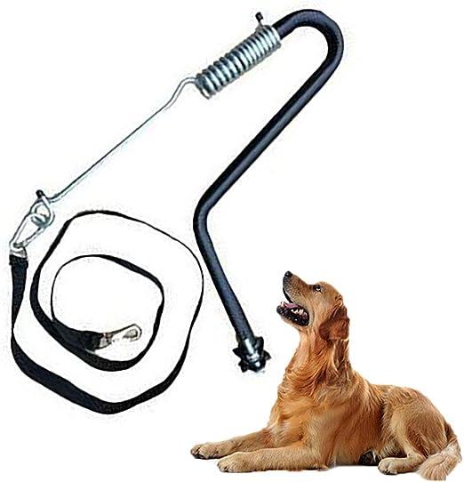 FXQIN Soporte de Bicicleta para el Perro, fácil Control sin ...