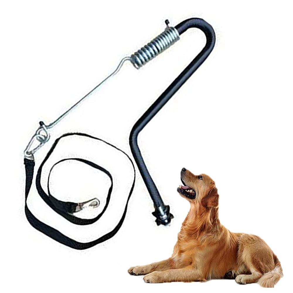 FXQIN Hands Free Dog Bicycle Exerciser Leash - Easy Pull Tug Free Control from Small to Large Dogs, for Running, Hiking & Walking by FXQIN (Image #1)