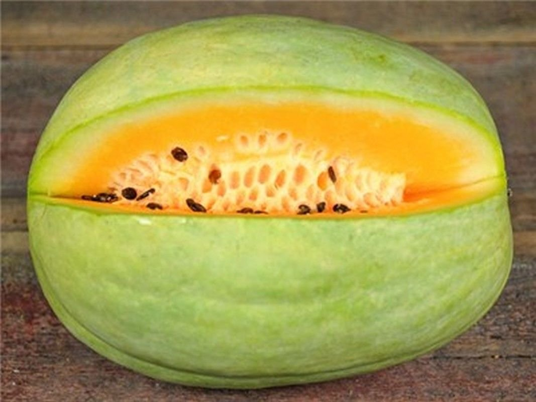 Desert King Watermelon Seeds - light green skin and yellow-orange flesh.!!(100 - Seeds) by Unknown