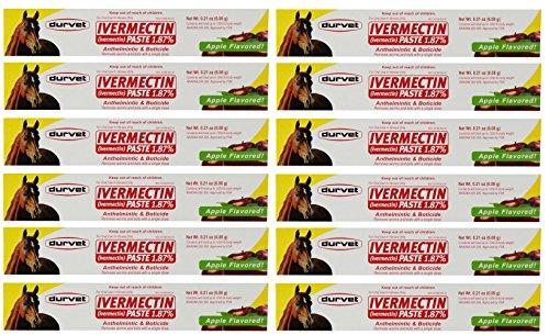 Durvet Ivermectin Paste Equine Dewormer - 12 Pack