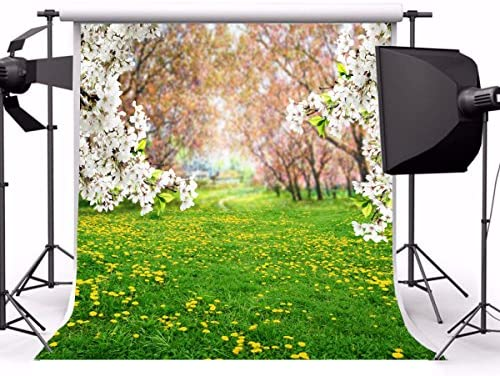 8x10ft Dreamy Forest Photography Sweet Florets Backdrops Artistic Backdground Fairy Tales Tree Grass Flowers Kid Baby Toddler Newborn Girl Portrait Photo Shoot Studio Props Video