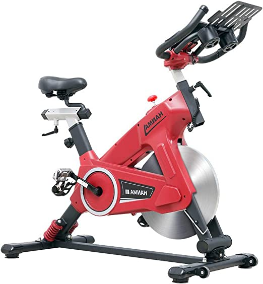 MJ-Sports Equipo de Gimnasio para el hogar y la Bicicleta de Ejercicios para el Interior Que Adelgaza el Color de la Bicicleta 2 Opcional: Amazon.es: Hogar
