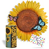 Mother's Day Sunflower Stepping Stone with Growing Seed Kit for Beginner or Experienced Gardeners