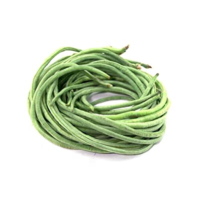 Civilys Seeds-Cowpea Seeds Yard Green Bean Seeds Southern Pea Seeds Organic Vegetable Seeds for Planting-Garden Seeds : Garden & Outdoor