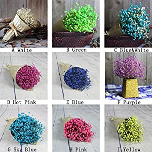 Mchoice Natural Dried Flower Baby's Breath Home Decor Natural Dried Flower Full Stars Gypsophila 19