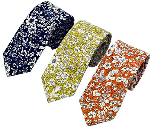 Printed Mens Tie (Men's Fashion Causal Cotton Floral Printed Tie Necktie Skinny Ties for Men Pack of 3)