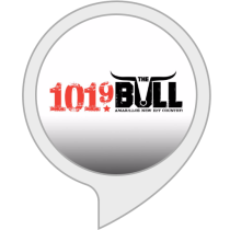 101.9 The Bull - Flash Briefing