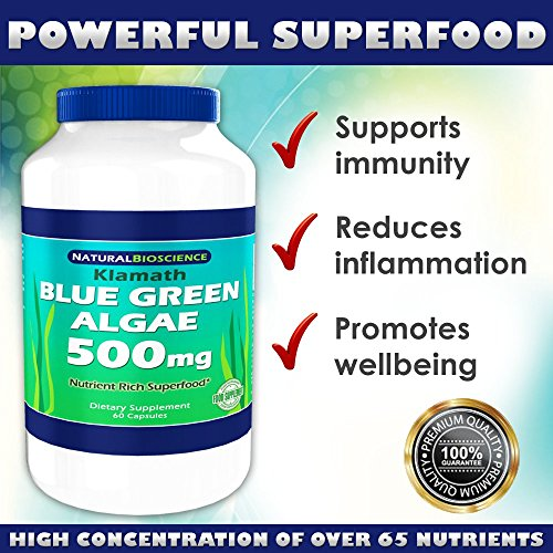 Klamath Blue Green Algae 500mg, Nutrient Rich Superfood, More Nutritious Than Spirulina and Chlorella, From Pure Lake Klamath, Contains Vitamins, Minerals, Enzymes, Amino Acids and EFAs, 60 Count Klamath Blue Green