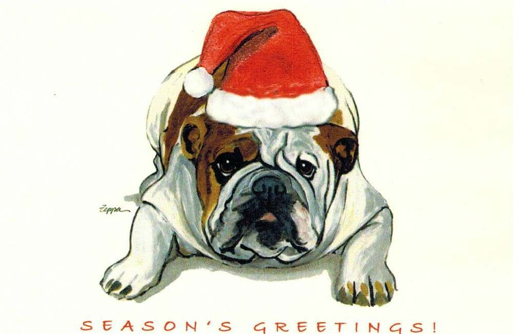 Amazon.com : Bulldog Christmas Cards Box of 8 Cards : Office Products