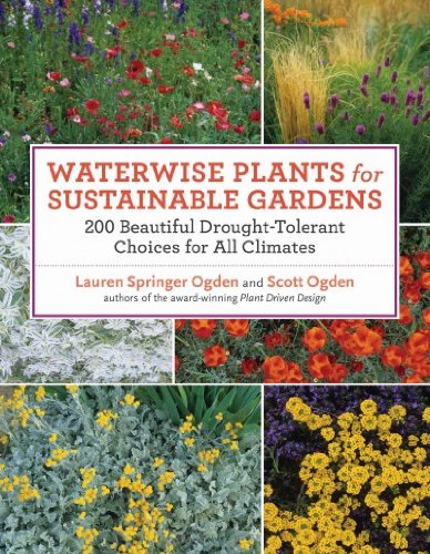Waterwise Plants For Sustainable Gardens 200 Drought-Tolerant Choices For All Climates Waterwise Plants For Sustainable Gardens