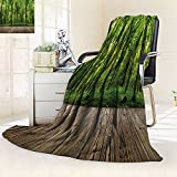 Microfiber All Season Blanket/Flannel Fleece Blanket/Luxury Blanket/Heavy Warm Blanket-Wrinkle and Fade Resistant Hypoallergenic Fleece Blanket-65'' x 90''(wood textured backgrounds in a interior on t)